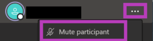 Teams Mute Participant option
